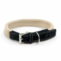Dog Collar Leads Harness